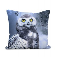 Owl In Woodland 100% Polyester Velour Cushion - Original Artwork     202402952436