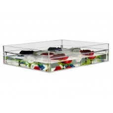 Clear Acrylic False Bottom Tray Centerpiece Table Top Shadow Box 16 x 16 x 4   352043298014
