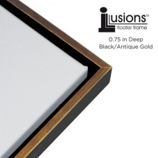 "Illusions Canvas Finished Art Floater Frame, 3/4"" Deep Canvas For Float Effect   152994633426"