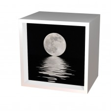 Light Box Arts Moon Over The Water Battery Powered LED Light Box Home Decor 692403239721  183230748534
