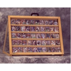 Table Top Card Display Case / Trade Show Case / 1/2 / Full Portable Table Top    391029937114