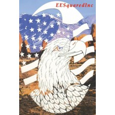 US Flag Eagle Static Cling Window Decal New OVAL 21x33 Patriotic Military Decor   152858922467