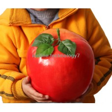 HUGE ARTIFICIAL APPLE FRUIT FAKE FAUX VEGETABLES CHILDREN HOUSE TEACHING PROPS R   252990156293