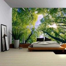 Wall26 - Sky View from Below a Tree Forest Wall - CVS - 100x144 inches   113200438501