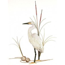 Snowy Egret Bird with Shells Metal Wall Art Sculpture- Bovano of Cheshire #W368   311657433952
